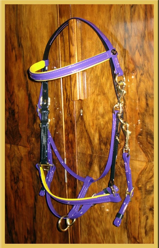 Classic Bridle - Bespoke-580