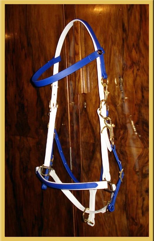 Classic Bridle - Bespoke-581