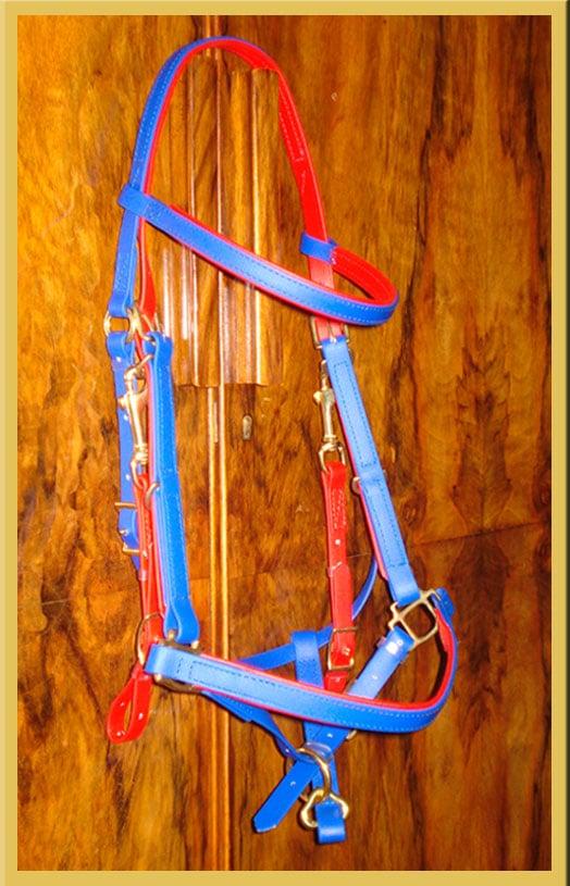Classic Bridle - Bespoke-98