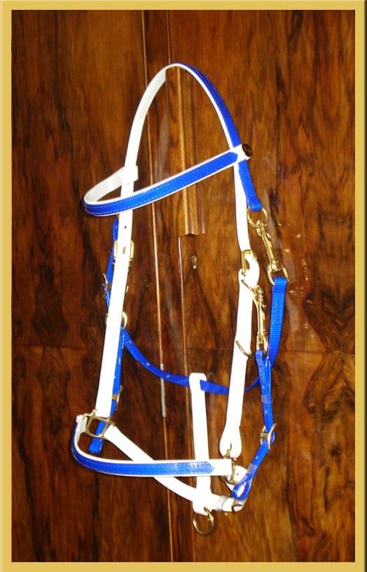 Classic Bridle - Bespoke-0