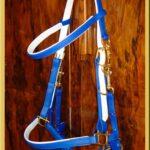 Classic Bridle - Bespoke-100