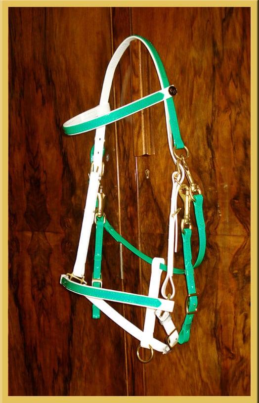 Classic Bridle - Bespoke-124