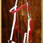Classic Bridle - Bespoke-93
