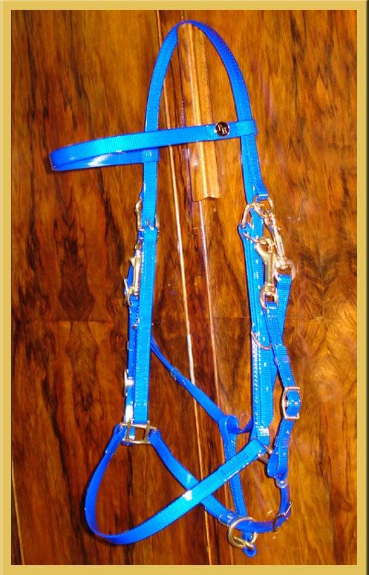 Classic Bridle-110
