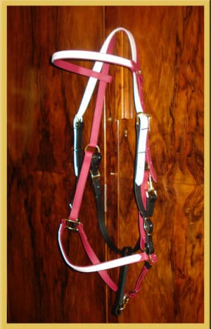 Two Part Bridle - Bespoke-0