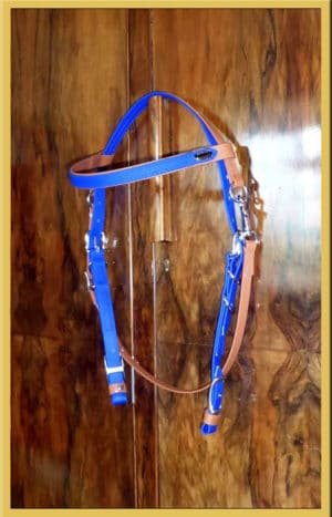Simple Bridle - Bespoke-0