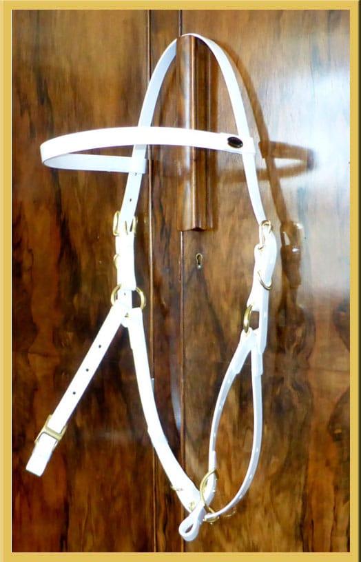 white hackamore bridle