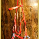 Hackamore Bridle with Orbitless-0