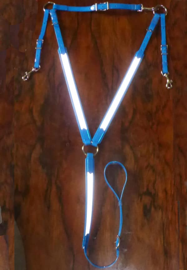 High Visibility Breastplate-1319
