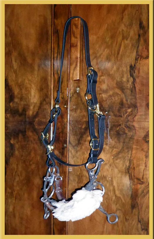 Myler Combination Bridle - Without Nose and Brow