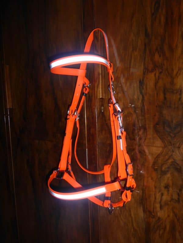 High Visibility - Classic Bridle-0