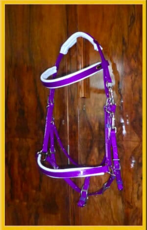 Classic Padded Bridle